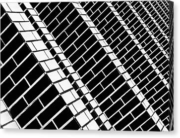 Over The Garden Wall Canvas Print by Paulo Abrantes