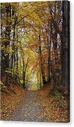 Over The Hill And Through The Woods In Autumn Canvas Print by Barbara McMahon