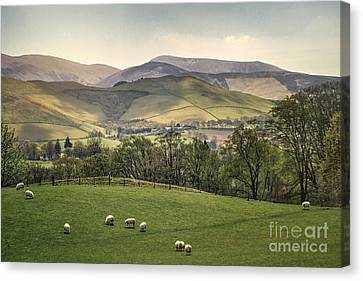 Over The Hills And Far Away Canvas Print by Evelina Kremsdorf