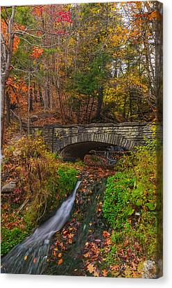 Over The Stream Canvas Print by Mark Papke