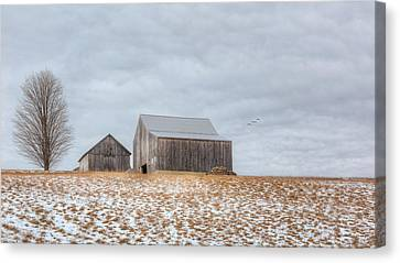 Overcast Canvas Print by Bill Wakeley