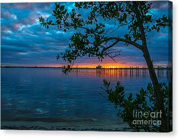 Overcast Sunrise Canvas Print by Tom Claud