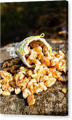 Fiber Canvas Print - Overflowing Sack Of Fresh Walnuts by Jorgo Photography - Wall Art Gallery