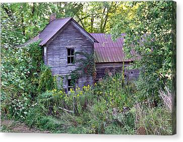 Overgrown Abandoned 1800 Farm House Canvas Print by Douglas Barnett