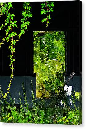 Overgrown Canvas Print by Rick Mosher