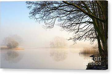 Overhang Canvas Print - Overhang Esthwaite Water Lake District by Richard Thomas