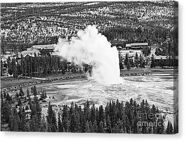 Overhead View Of Old Faithful Erupting. Canvas Print by Jamie Pham