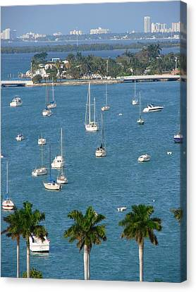 Overlooking A Miami Marina Canvas Print