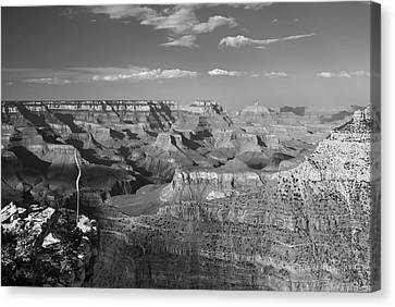 Overlooking Grand Canyon - Black And White  Canvas Print by Gregory Ballos