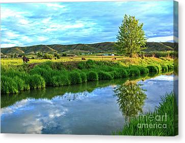 Reflection Harvest Canvas Print - Overlooking Irrigation Canal by Robert Bales
