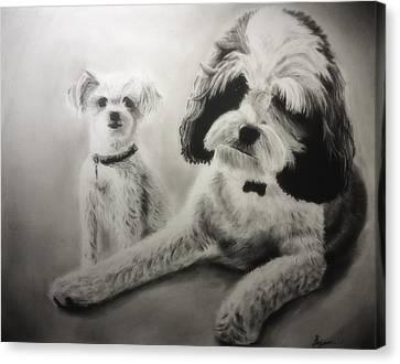 Owen And Stella Canvas Print by Benjamin Gassmann