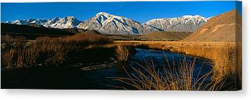 Autumn Landscape Canvas Print - Owens River Valley Bishop Ca by Panoramic Images
