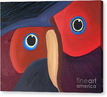 Owl - Sold Canvas Print by Paul Anderson