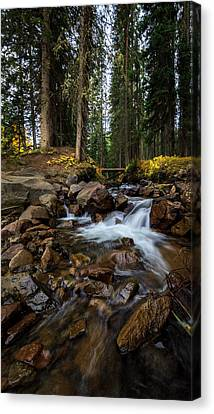 Owl Creek Cathedral Canvas Print by Jennifer Grover