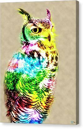 Owl Canvas Print by David Millenheft