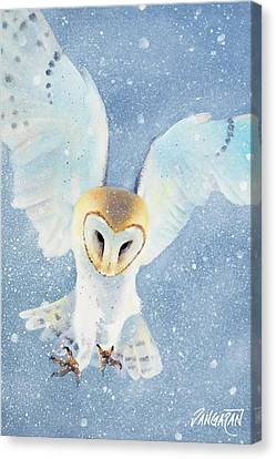 Owl Detail Canvas Print by Tim Dangaran