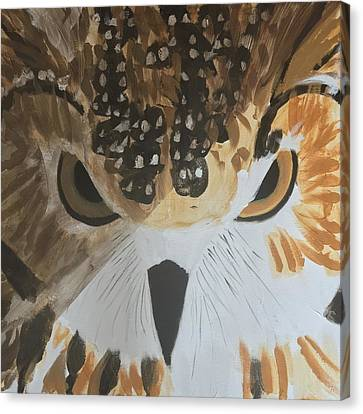 Owl Canvas Print by Donald J Ryker III