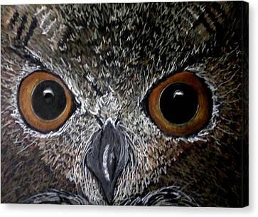 Owl Enlightened Canvas Print by Michelle Audas