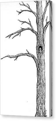 Owl Ink Tree Canvas Print