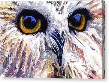 Owl Canvas Print by John D Benson