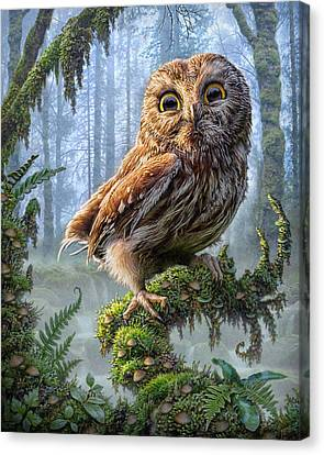 Mushroom Canvas Print - Owl Perch by Phil Jaeger