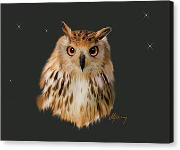 Owl Portrait  Canvas Print by Michael Greenaway