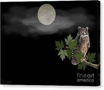 Canvas Print featuring the digital art Owl by Terri Mills