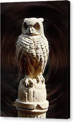 Owl Canvas Print by Terry Cork