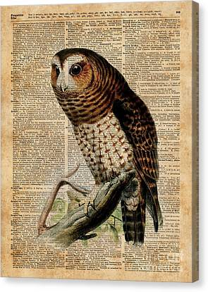 Old Barn Drawing Canvas Print - Owl Vintage Illustration Over Old Encyclopedia Page by Jacob Kuch