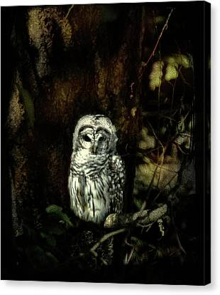 When The Owl Sings Canvas Print