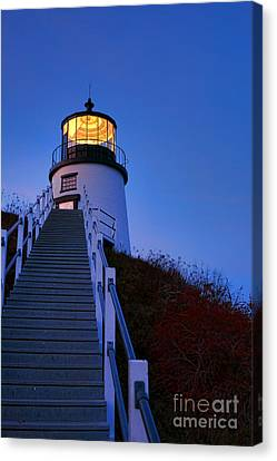 Owls Head Light At Dusk Canvas Print by Olivier Le Queinec