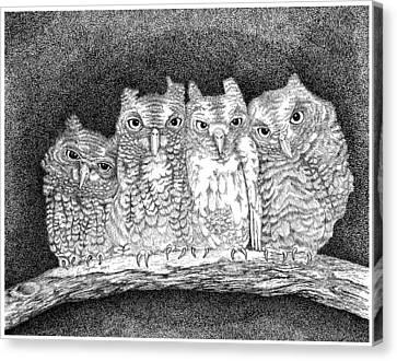 Owls Canvas Print by Lawrence Tripoli