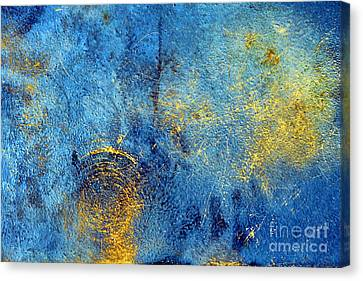 Oxidized Canvas Print by Olivier Le Queinec