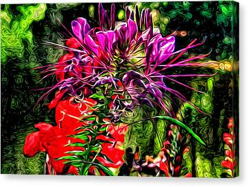 Oy Vey So Pretty Canvas Print by Kevin  Sherf