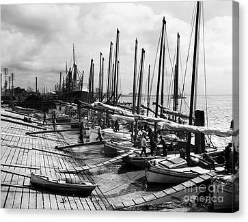Rowboat Canvas Print - Oyster Luggers, New Orleans Ca 1910 by Jon Neidert