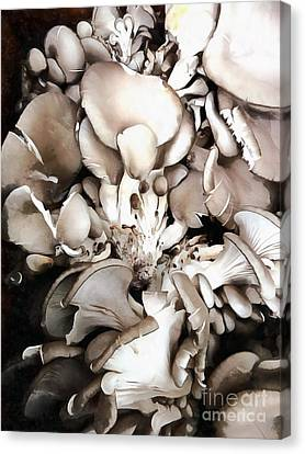 Oyster Mushrooms - Fruit Of The Forest Canvas Print by Janine Riley