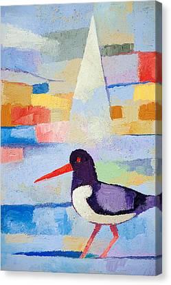 Oystercatcher At Sea Canvas Print