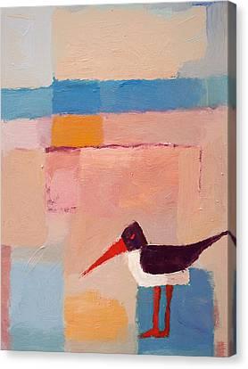 Oystercatcher On The Beach Canvas Print