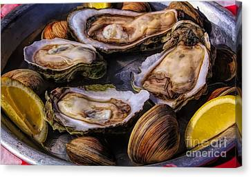 Canvas Print - Oysters And Clams by Paulette Thomas