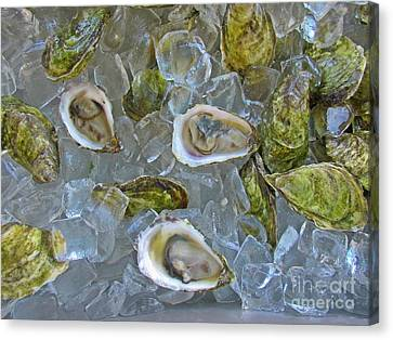 Oysters On Ice Canvas Print by John Malone