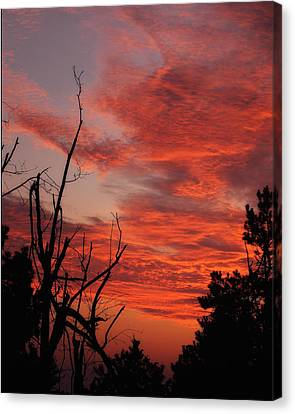 Canvas Print featuring the photograph Ozark Dawn by Michael Dougherty