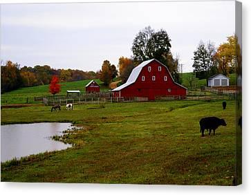 Ozark Farm Canvas Print by Marty Koch