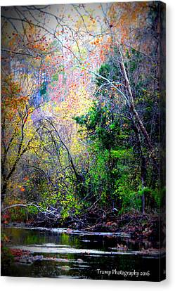 Ozarks Fall Canvas Print