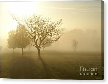 Ozarks Misty Golden Morning Sunrise Canvas Print by Jennifer White
