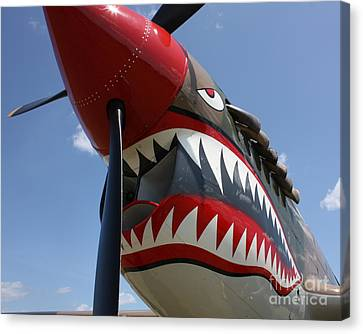 P40 Noseart Canvas Print by Bill Lang
