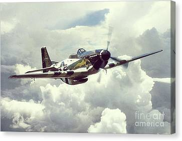 P51 Mustang - Quick Silver Canvas Print by J Biggadike