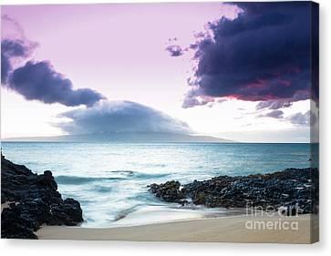 Paako Beach Treasures Canvas Print by Sharon Mau