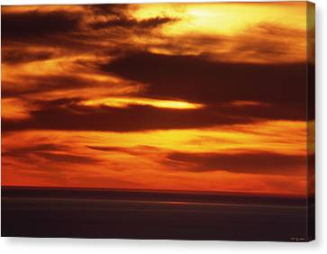 Pacific Backdrop  Canvas Print by Soli Deo Gloria Wilderness And Wildlife Photography