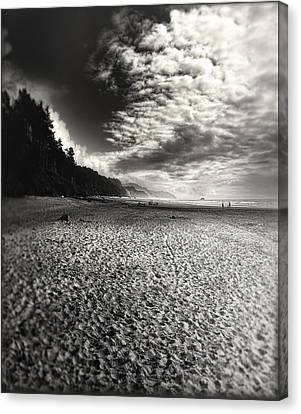 Canvas Print featuring the photograph Pacific Coast Highway Oregon by Douglas MooreZart