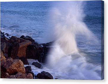 Pacific Coast Highway Canvas Print by Soli Deo Gloria Wilderness And Wildlife Photography